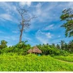 Spectacular Andaman Nicobar Islands In Photos