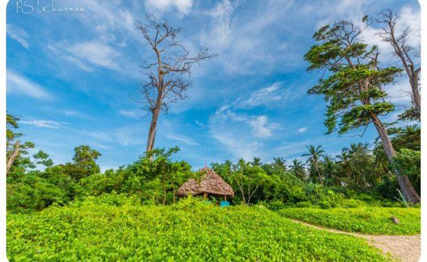 Spectacular Andaman Nicobar Islands In Photos