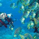 Discover Scuba Diving in Andaman