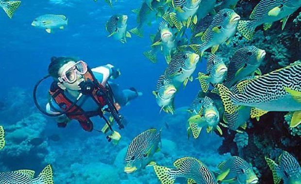 Discover Scuba Diving Andaman